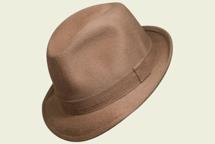 Unlined Brown Barbisio